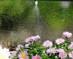 Система полива дождеванием для теплицы Ботаник